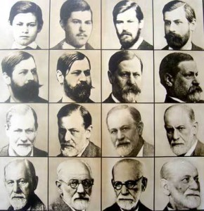 freud evolution